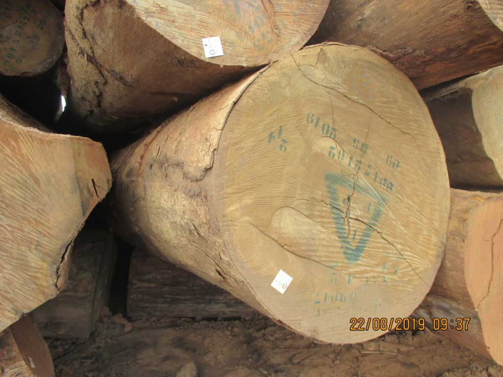 Round logs movingui